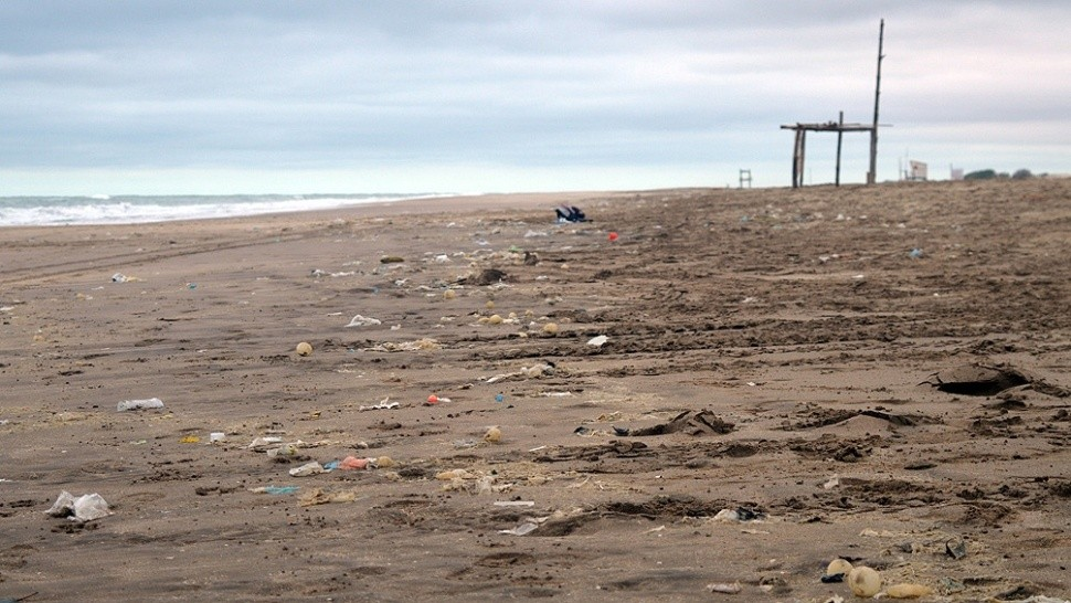 Una ONG analizó y categorizó los desechos en las playas de la costa local